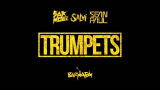 Sak Noel & Salvi ft. Sean Paul - Trumpets (Audio)
